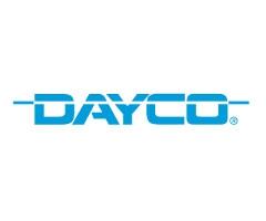 Dayco (США)